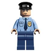 LEGO Super Heroes DC Universe - Guard (Arkham Asylum)