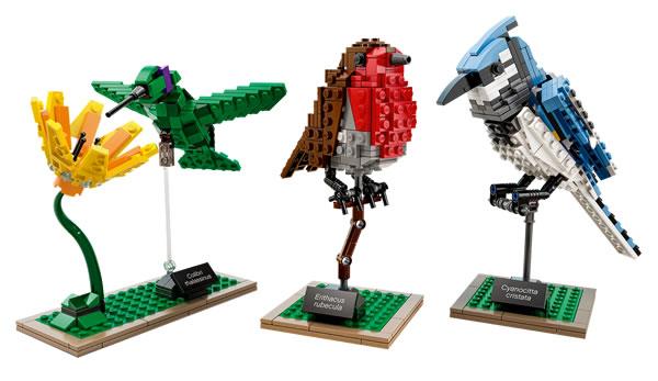 LEGO Ideas 21301 Birds