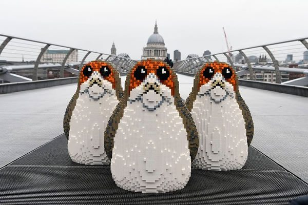 These ARE the Porgs you're looking for…