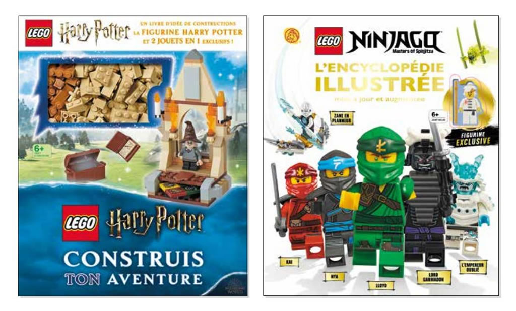 Livres Lego Harry Potter Et Ninjago Les Versions