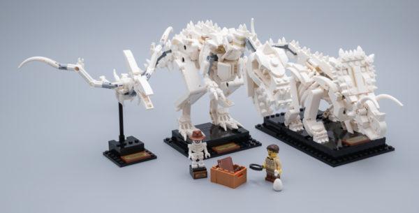 Vite testé : LEGO Ideas 21320 Dinosaur Fossils