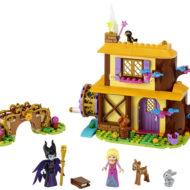 43188 Aurora's Forest Cottage